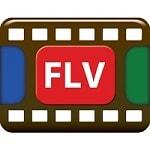 konverter-flv