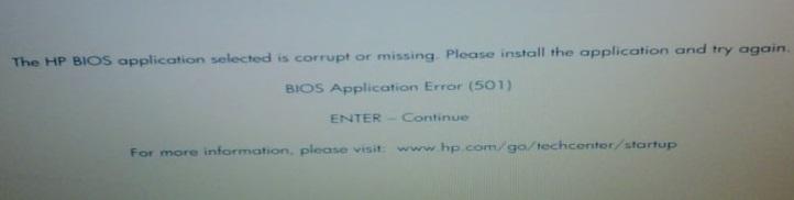 error-501-bios